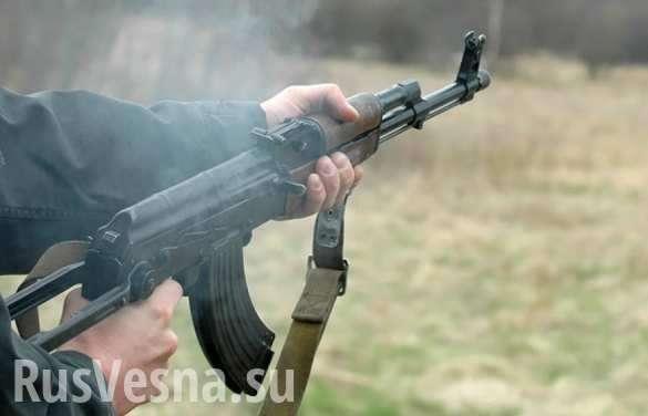 Украина погружается в анархию и бандитизм: сводки с полей | Русская весна