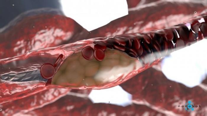 Микрокосмос внутри нас. Как выглядят наши клетки