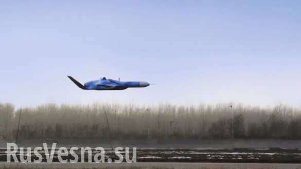 Китай создаёт уникальный БПЛА – «убийцу кораблей» | Русская весна