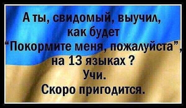 Украина: в рядах «свидомых патриотов» начались жестокие разочарования. Истории из жизни