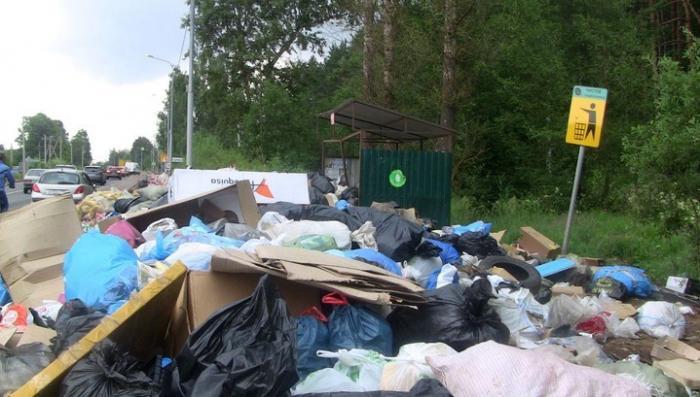 Вдоль московских трасс на фоне плакатов «Чистое Подмосковье» растут горы мусора