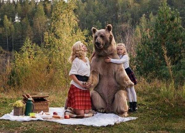 Владимир Путин против ГМО продуктов: «русский медведь» будет здоровым и сильным
