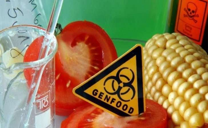 В Европе официально зарегистрирована смерть от ГМО–продуктов