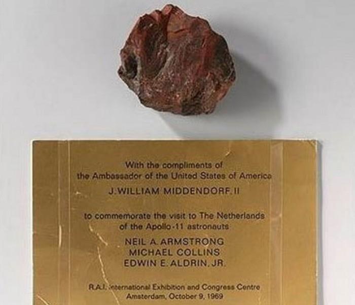 Американские «лунные камни», подаренные Нидерландам, оказались земным окаменевшим деревом