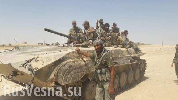 Сирия: правительственная армия, «Тигры» и ВКС России сжимают котёл, завершая разгром ИГИЛ