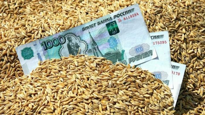 Зерно без ГМО: США прогнозируют лидерство России в мировом экспорте пшеницы