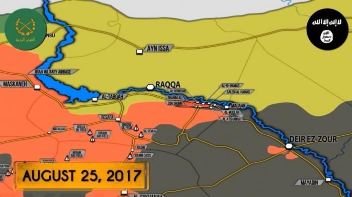 Сирия: контратака наёмников из ИГИЛ – погибло 100 сирийских солдат