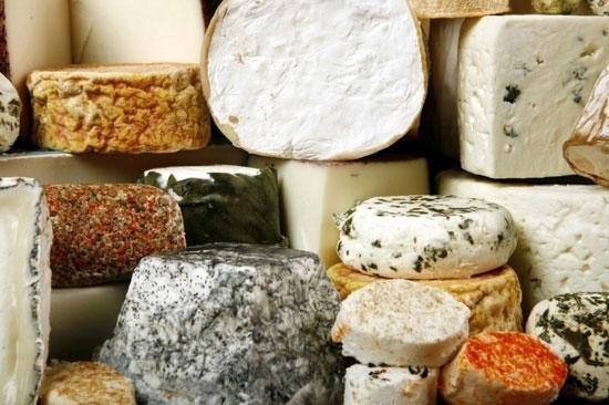 Что я думаю о запрете французского сыра