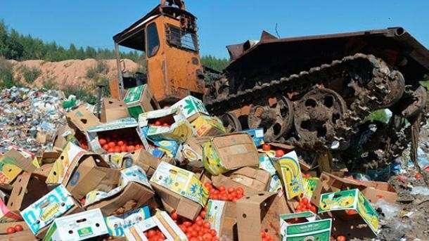 Белоруссия, санкционные продукты: ФТС накрыла крупную сеть контрабандистов