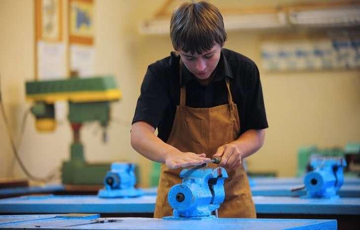 От аграриев до робототехников: систему школьной профориентации ждет