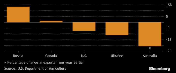 Bloomberg: Российские морские порты и железные дороги перегружены в связи с гигантским урожаем