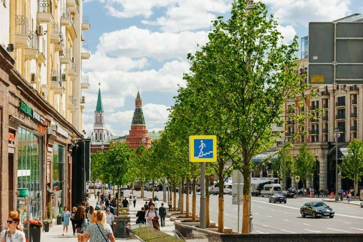 Москва 870 лет: тысячи деревьев для нашей любимой столицы!