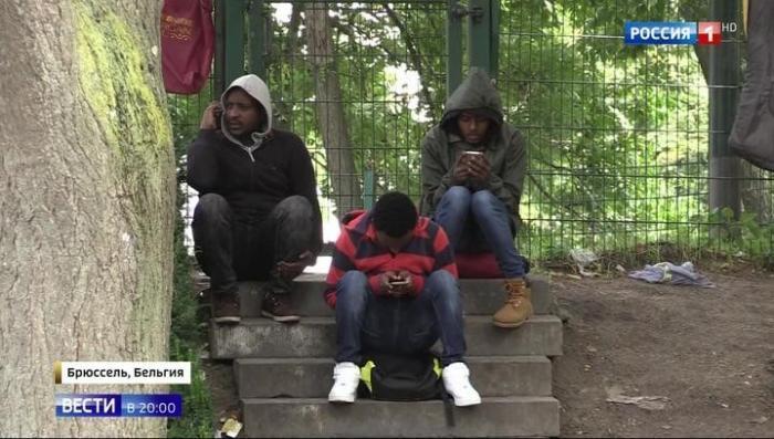 В центре Брюсселя выявлены туберкулез и чесотка