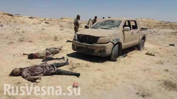 ВКС России жестоко отомстили за наших, уничтожив главарей «Аль-Каиды» в Идлибе и Хаме | Русская весна