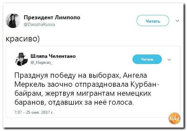 Юмор помогает нам пережить смуту: украинский дурдом – 2