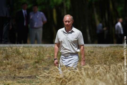 Россия побила рекорд СССР по производству хлеба