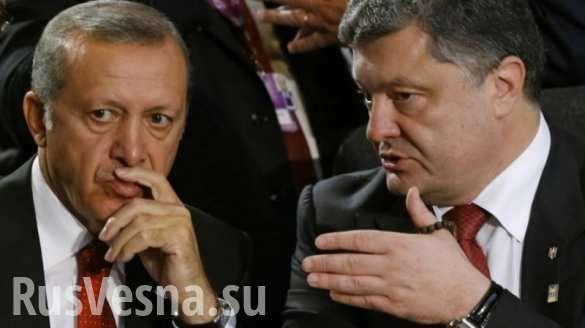 Рэджеп Эрдоган опозорил Порошенко в прямом эфире | Русская весна