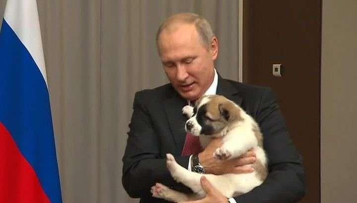 Президент Туркмении подарил Владимиру Путину алабая по кличке Верный