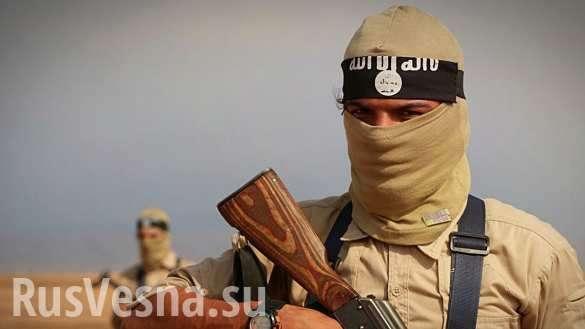 Сирия: каким оружием воюют бравые американцы в ИГИЛ | Русская весна