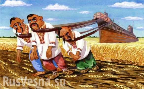 Что«москитный флот» Украины способен выставить против ВМФРФ? | Русская весна