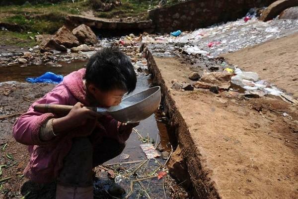 Грязная окружающая среда убивает в 15 раз больше людей, чем все войны и насилие в мире