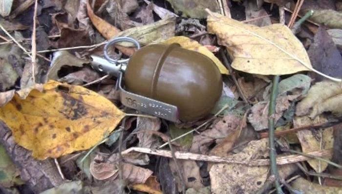 В Курской области схватили украинского вооружённого диверсанта, перешедшего границу