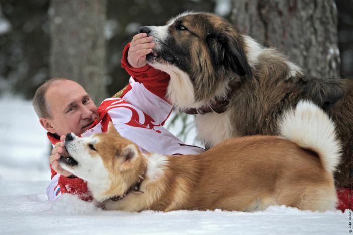 Настоящая причина популярности Владимира Путина