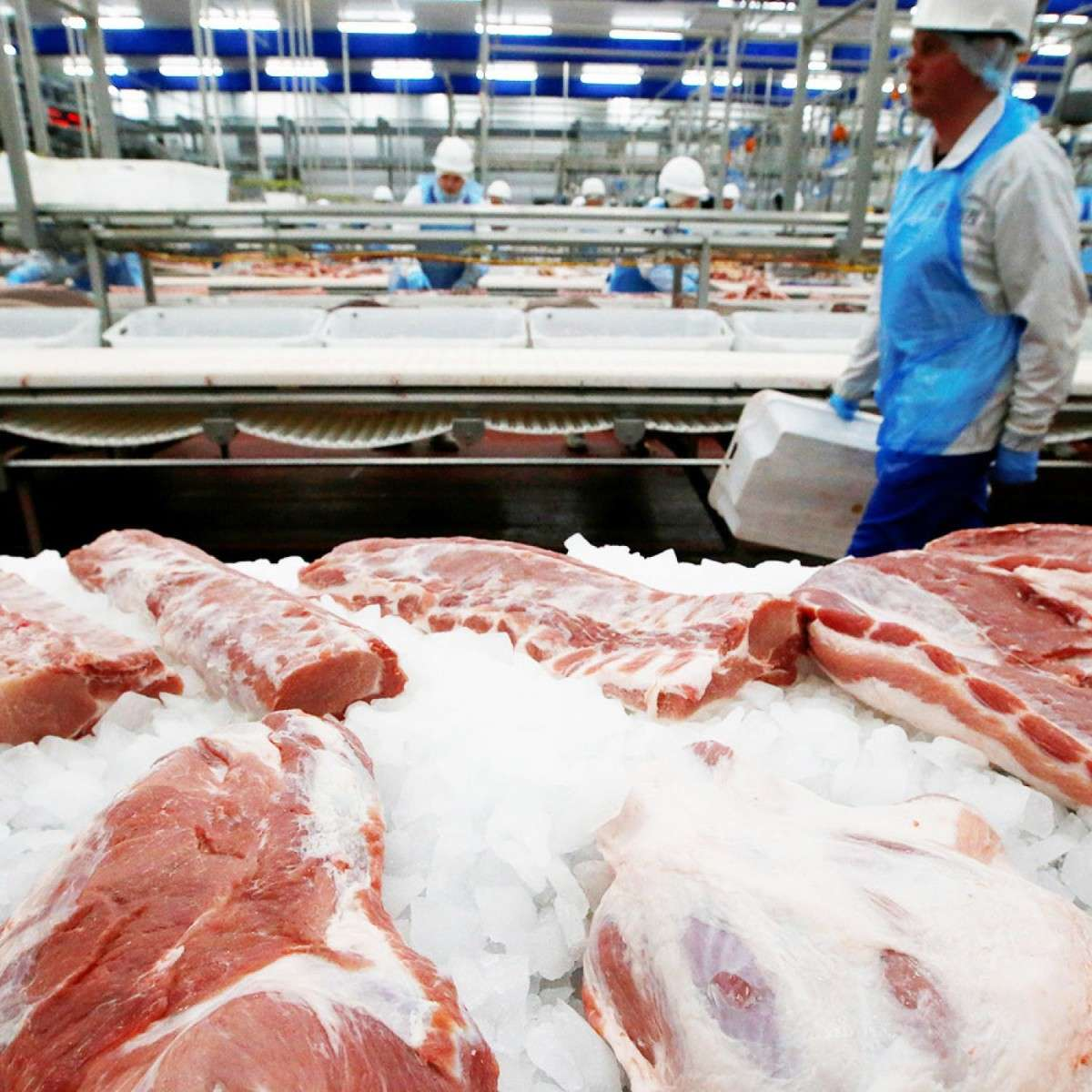 Россия расширила список попавших под продуктовое эмбарго товаров
