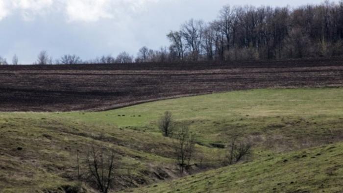 Лондонские паразиты призывают Украину продать 10 млн. гектаров земли