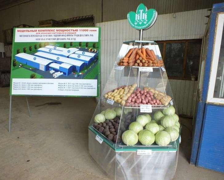 ВСмоленской области реализуется масштабный проект построительству модульных картофелехранилищ