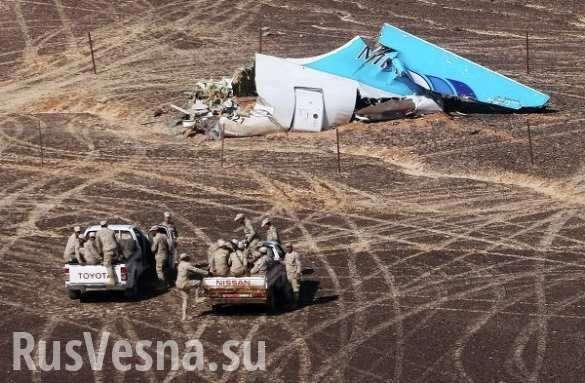 Теракт над Синаем: кто ответит за ритуальное убийство 224 человек | Русская весна