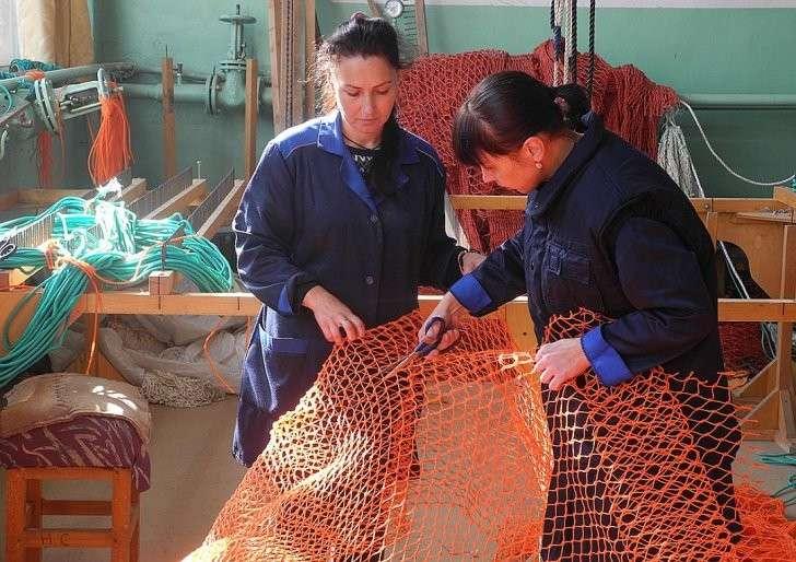 Кошельковый невод снова востребован для лова иваси. Фото: Алексей БОЯРСКИЙ