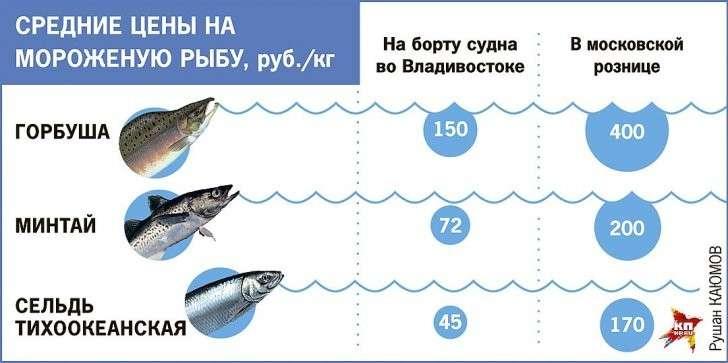 Средние цены на мороженую рыбу Фото: Рушан КАЮМОВ