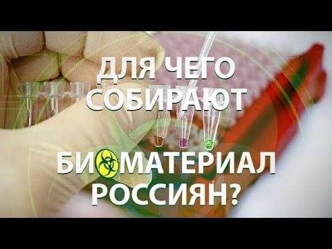 Мурманск, биологическое оружие: чиновники пытались нелегально вывезти биоматериал россиян