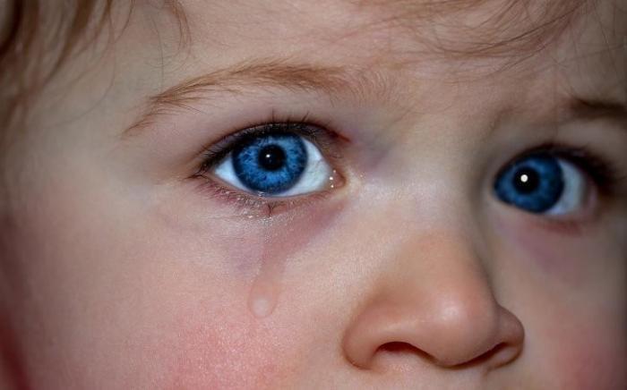 На Украине в 2017 пропали без вести 5000 детей. Чёрная трансплантология еврейской Хунты