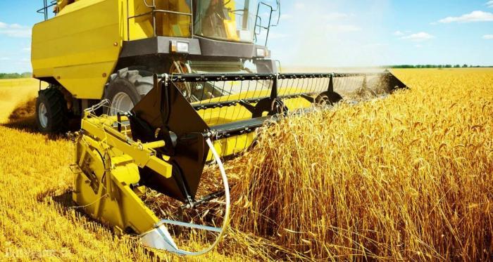 Золотая пшеница – новая нефть России, СМИ США