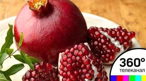 Крым вНикитском ботаническом саду начали сбор урожая экзотических фруктов