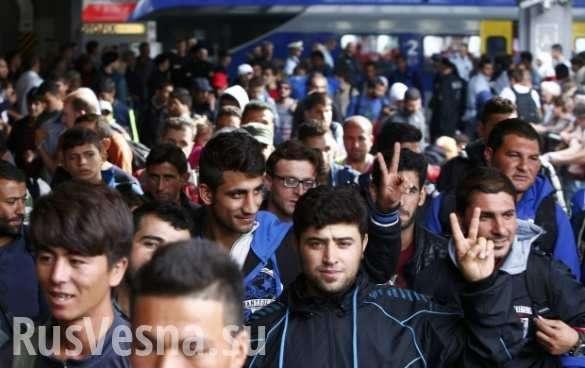Распад Европы: беженцы осядут в ЕС навсегда   Русская весна
