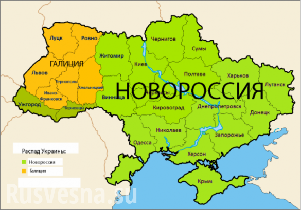 «Крым уже уехал, и мы уедем со своими территориями», нардеп шокировал неонациста | Русская весна
