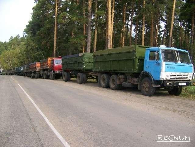Машины, груженные зерном нового урожая. Алтайский край