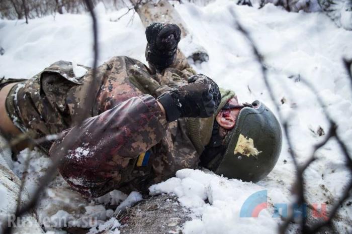 Каратели ВСУ. Десятки убитых и раненых! – украинские «волонтёры» о потерях