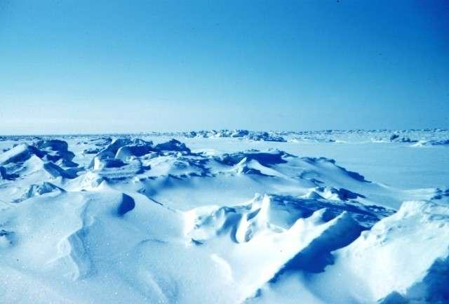 США создают условия для своего поражения от России в Арктике, WT