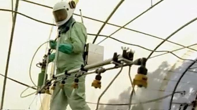 В ЕС лоббистам Monsanto удалось продлить разрешение использовать яд глифосат