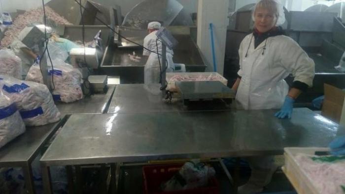 Реальность евроинтеграции: «хуже, чем в тюрьме». Как украинцы становятся рабами в Польше
