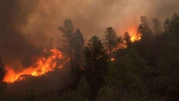 В Калифорнии эвакуируют 38 тысяч жителей из-за лесного пожара