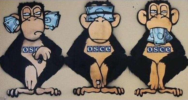 Слепоглухонемое ОБСЕ в Донбассе исцеляется, вопреки собственному желанию
