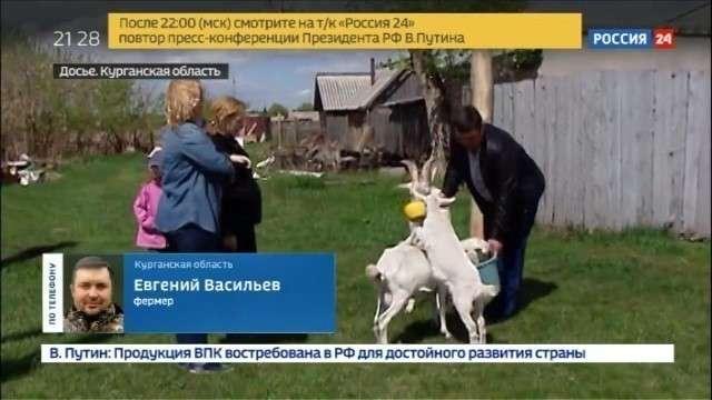 Конференция Владимира Путина. Дело фермера с GPS для коровы, вернули на доследование