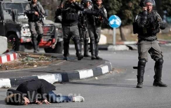 Иерусалим: в столкновениях евреев и палестинцев есть погибшие, сотни раненых | Русская весна