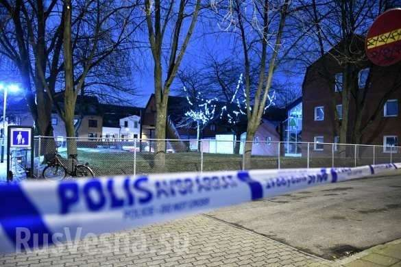 Швеция: банда мигрантов жестоко надругалась и подожгли 17-летнюю школьницу | Русская весна