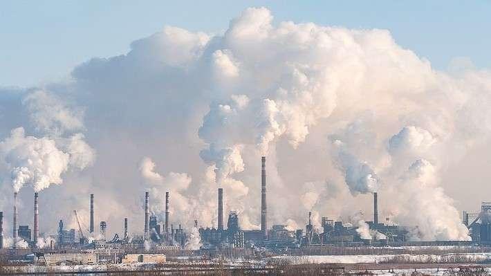 Что сделано вРоссии вгод экологии? Часть 2